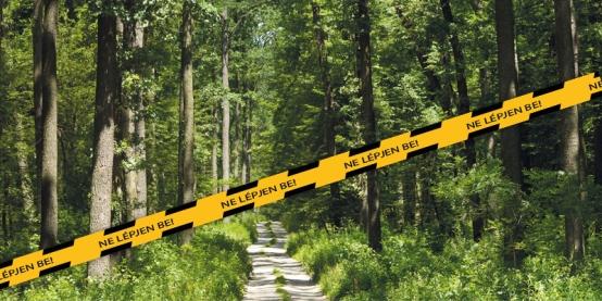 Erdőlátogatási korlátozás a Kupi- és Magyarpolányi erdőkben