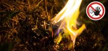 Mától tilos az erdőkben tűzet gyújtani